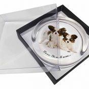 Papillon Hunde 'Love You Mum' Glas Briefbeschwerer in Geschenkbox Weihnachtsgesc - 1