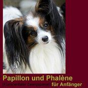 Papillon und Phalène (Kontinentaler Zwergspaniel) für Anfänger: Auswahl, Kauf, Haltung, Gesundheit, Pflege (compbook pets) - 1