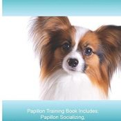 Papillon Training Guide. Papillon Training Book Includes: Papillon Socializing, Housetraining, Obedience Training, Behavioral Training, Cues & Commands and More