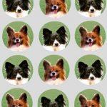 12x Papillon Hund Design Reispapier Törtchen Dekoration 40mm Vorgestanzt