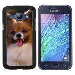 Hartschalenkoffer HandyHülle Schutzhülle Tasche Hülle CASE for Samsung Galaxy J1 J100 // Better Special Heat / Papillon Chihuahua-Hund Klein Hundeartige /
